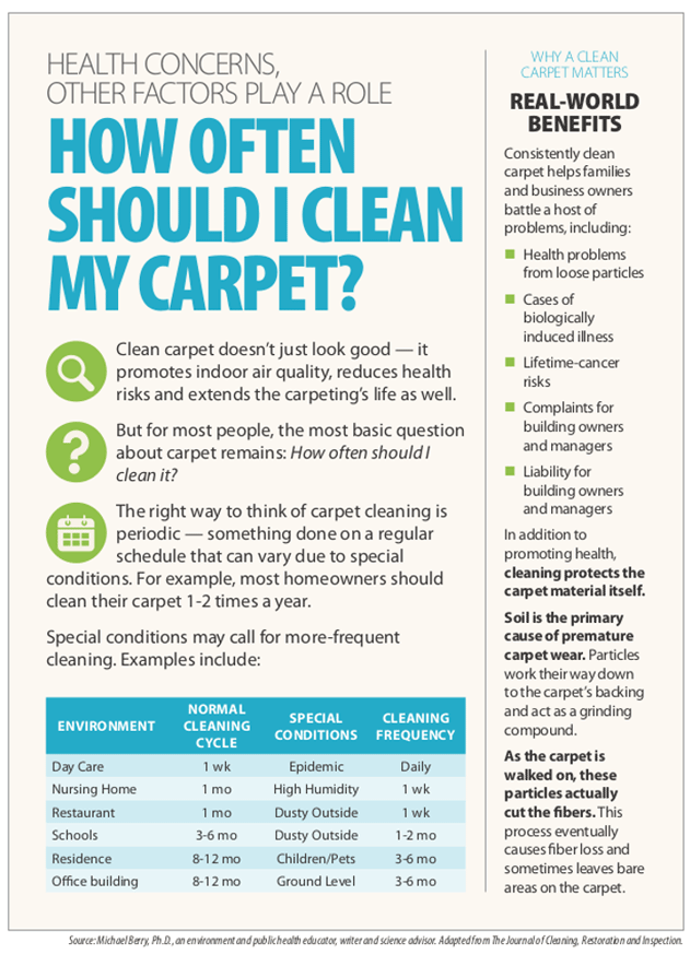 Carpet Cleaning Frequency Infographic